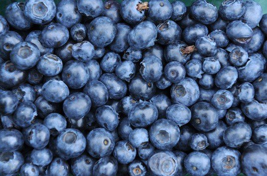 [FOTOS] Diez alimentos para la inteligencia y que fortalecen el cerebro